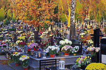 Ekologia na cmentarzu podczas Wszystkich Świętych