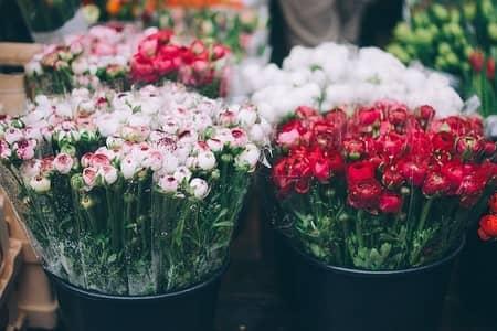 okradanie grobów z kwiatów
